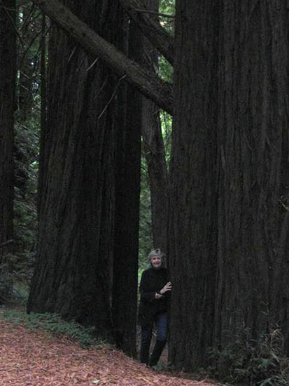 Mary Giles in Forest