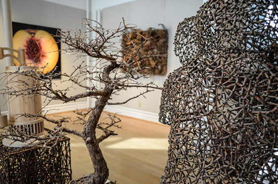 From the Ground Up: ART inspired by Nature installation, Gyöngy Laky, Jane Balsgaard, Photo by tom Grotta