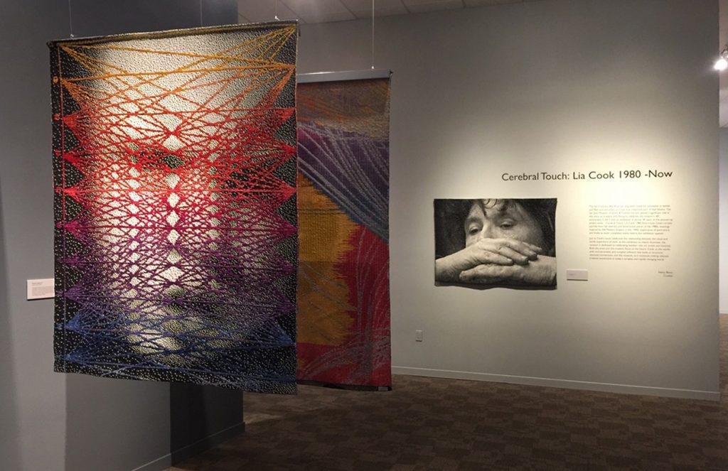 Lia Cook exhibit installation