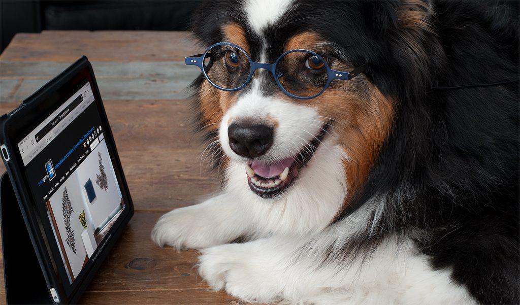 Browsing browngrotta.com